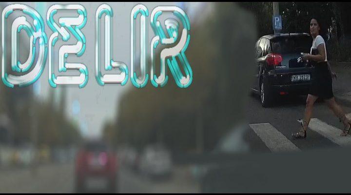 DELIR