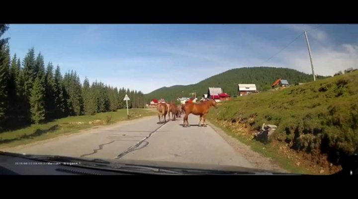 Driving in Romania #3