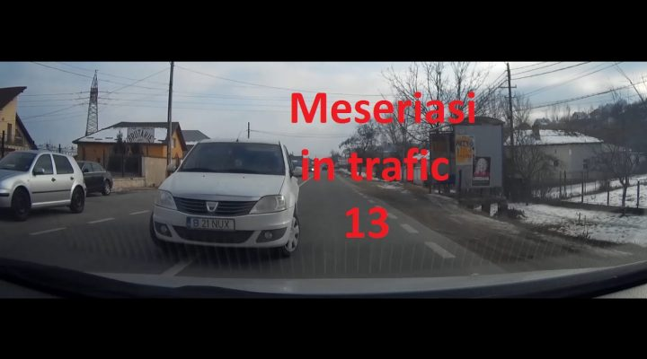 Meseriasi in trafic 13
